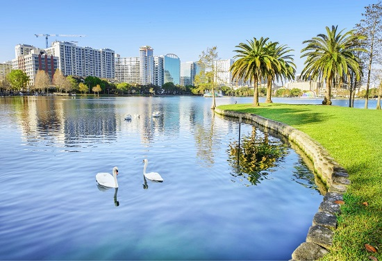 Lake Eola with swans in the lake and the Orlando skyline in the background