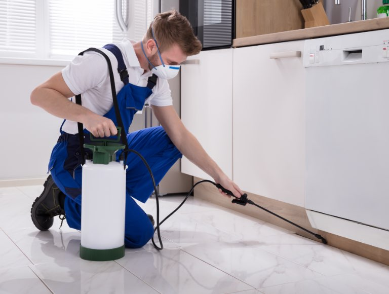 Pest control specialist applying chemical treatment to kitchen baseboards